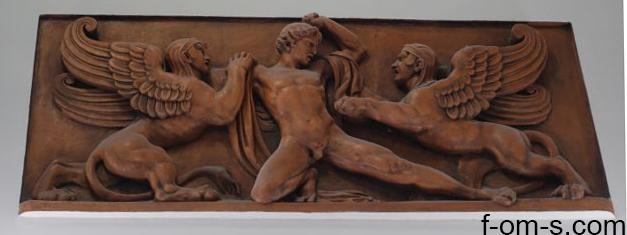 Anatomische Sammlung: Bild