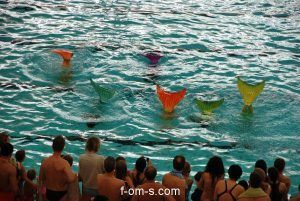 Wassersportfestival Meerjungfrauenschwimmen